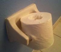 poner o colocar el papel higiénico